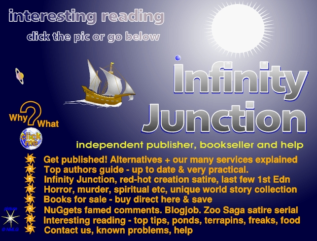 Write better, publish, sell, with Infinity Junction